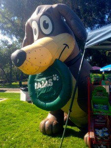Super-cute display from Iams
